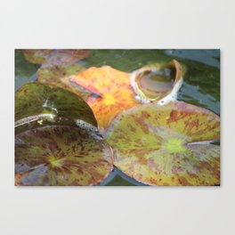 Her name was Lily Canvas Print