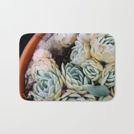 California Potted Succulents Bath Mat