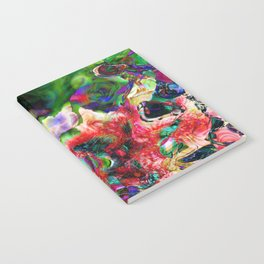 Psychedelic Persuasion Notebook