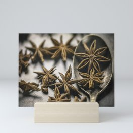 A Spoonful of Stars by TL Wilson Photography Mini Art Print