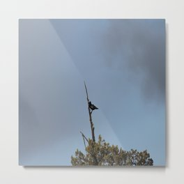 Perched Before the Storm Metal Print