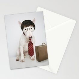 Accountant Stationery Cards
