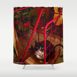 Cat in a Cart (Gracie Queen of Chicago Collection) Shower Curtain