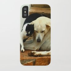 Like cats and dogs iPhone X Slim Case