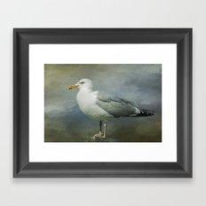 Seagull Framed Art Print