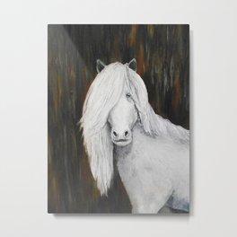 White Shetland Pony Painting Metal Print