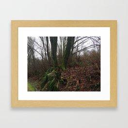 Montrose Park Trail February Framed Art Print
