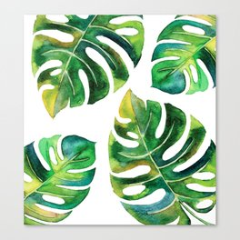 Wildness In Monstera Canvas Print