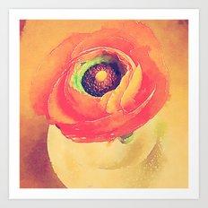 Orange Ranunculus Bold Vintage Botanical Water Color Effect Art Print