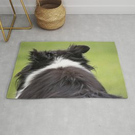 Rudy ~ Border Collie Rug