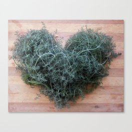 spiced heart Canvas Print
