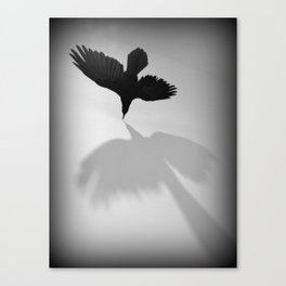 Raven Shadow Canvas Print