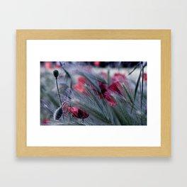 JUNE NATURE  Framed Art Print