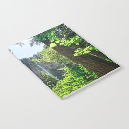 View of Multnomah Falls surrounded by forest in Oregon Notebook