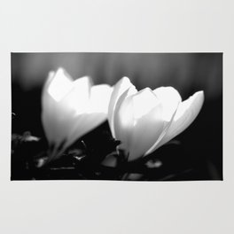 You Two - Crocus Flowers Black And White Rug