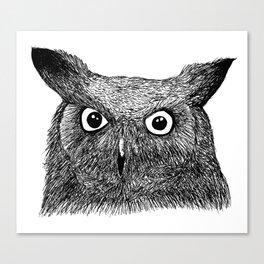 The Eyes of Wisdom Canvas Print