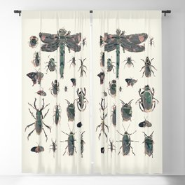 Collection of Insects Blackout Curtain