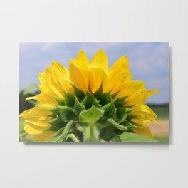 Bright Sunflower Metal Print