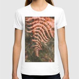 Autumn fern T-shirt
