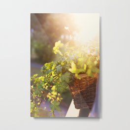 THOSE SUMMER EVENINGS Metal Print