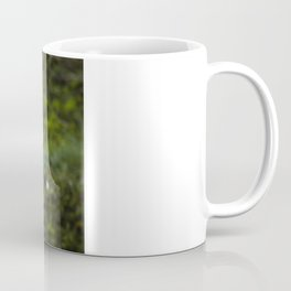 The Chubby Squirrel Coffee Mug