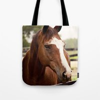 coco Tote Bags featuring Coco by Images by Nicole Simmons