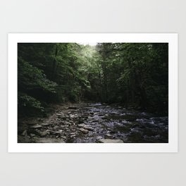Mason-Dixon Creek Art Print