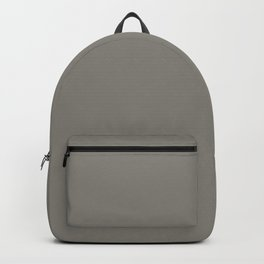 Weathered Wood Grey Solid Color Behr's 2021 Trending Color Barnwood Gray PPU24-07 Backpack