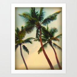 Key West Palms Art Print