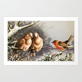 Vintage Chubby Winter Birds Art Print