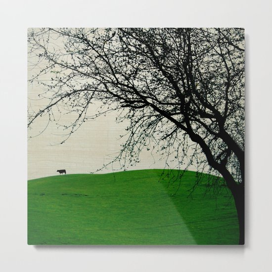 The Black Cow Metal Print