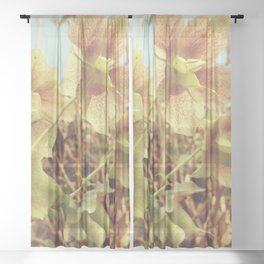 Spring Hellebore Sheer Curtain