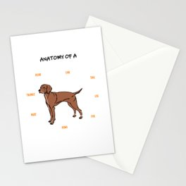 Anatomy Of A Vizsla Dog Stationery Cards