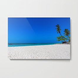 White Sands and Palm Trees Metal Print