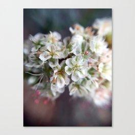 Flower Cluster Canvas Print
