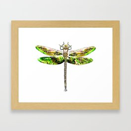 Dragonfly illustrated flying insect Framed Art Print