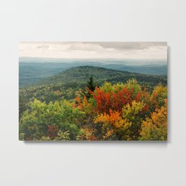 The Changing of Leaves, New England Metal Print