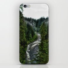 Over the River iPhone & iPod Skin
