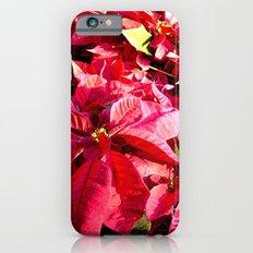Poinsettia I Slim Case iPhone 6s