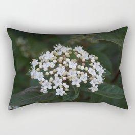 Viburnum tinus flowers and buds Rectangular Pillow