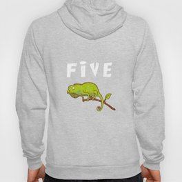 Kids 5 Year Old Lizard Reptile Birthday Party 5th Birthday Hoody