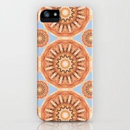 Rust-Art / Colors of Rust / mandala-style-rust iPhone Case
