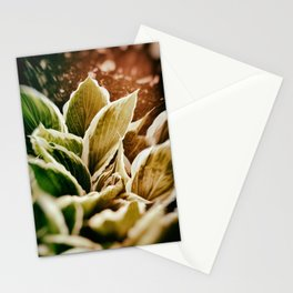 Powerplant Stationery Cards