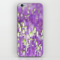 lavender iPhone & iPod Skins featuring Lavender by Paula Belle Flores
