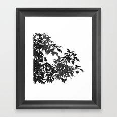 Leaves Silhouette - Black & White Framed Art Print