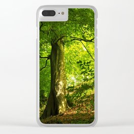 Beech Tree Clear iPhone Case