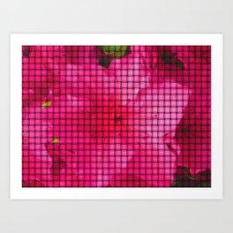 flowing flower pink Art Print