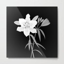 Monochrome Lilies Illustrative Art Metal Print
