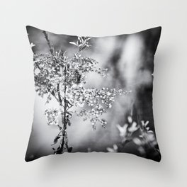 Grunge Film Noir Dried Plants Nature Image Throw Pillow