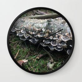 Fairies. Rushmere Country Park, Bedfordshire Wall Clock